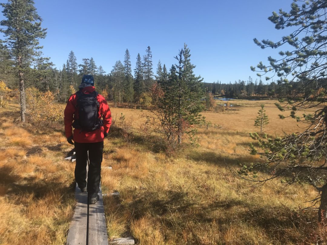 Lars Axelsson vandrar i härlig fjällmiljö