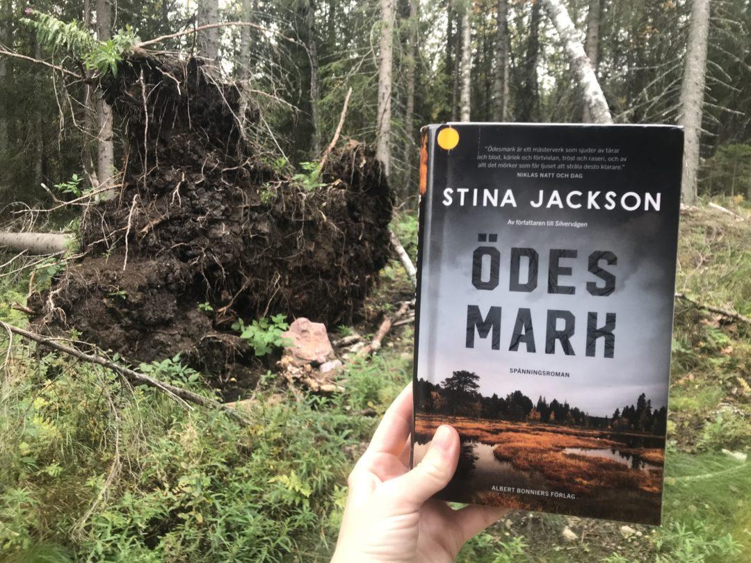 Boken Ödesmark hålls upp av en hand framför en stor rotvälta i skogen