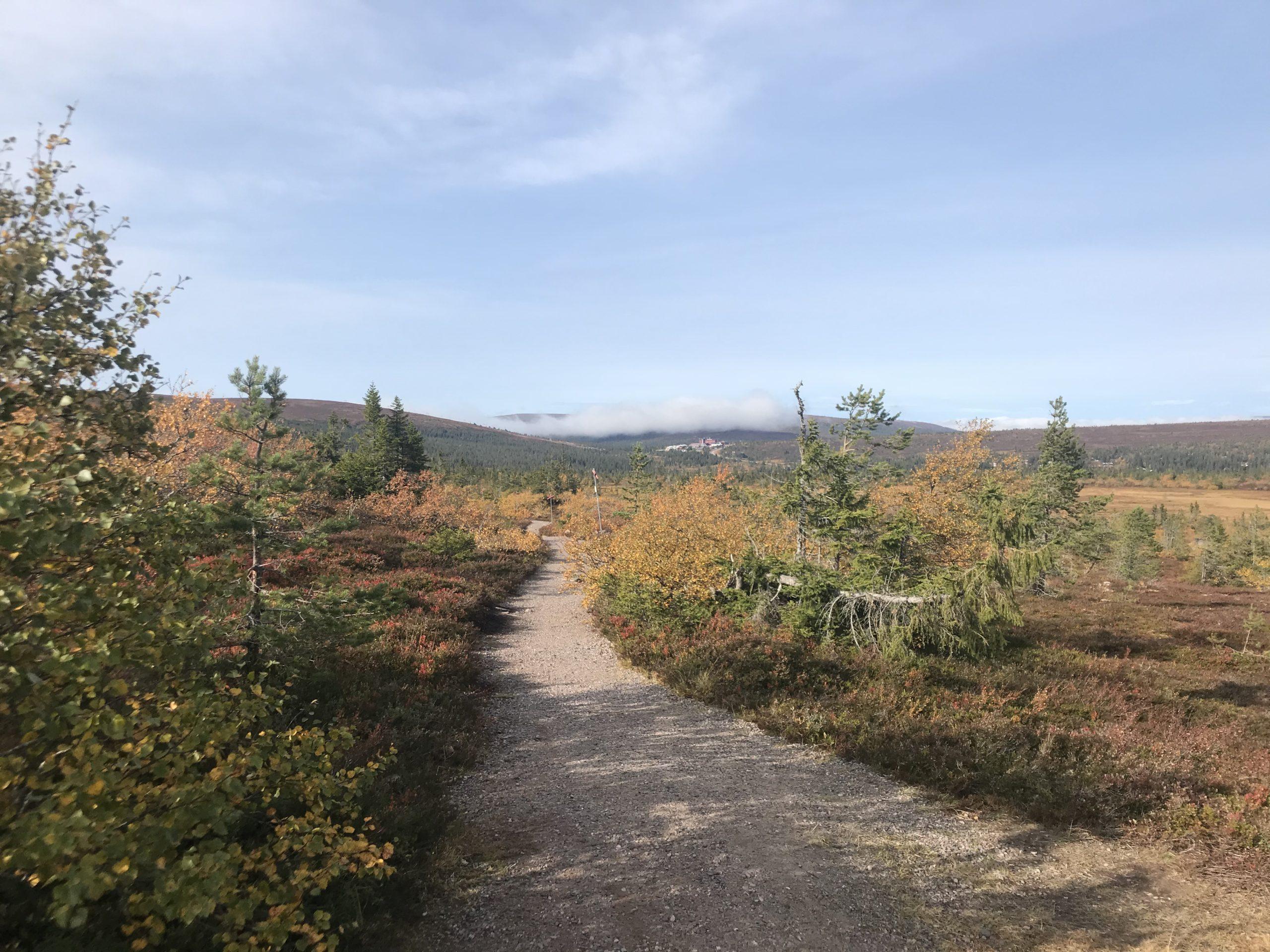 Cykelled i Lindvallen i Sälen